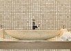 mozaic-obiecte-sanitare-baie