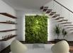 greseli-in-design-interior-plante