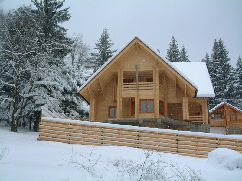 casa de vacanta din lemn 2