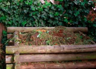 compostarea frunzelor