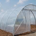 Amenajare solar legume