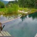 piscina naturala