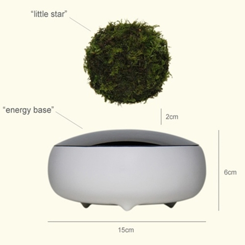 air-bonsai-diagram