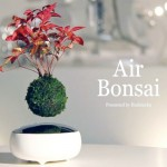 Inovatie: Levitatia magnetica – Bonsai Hoshinchu